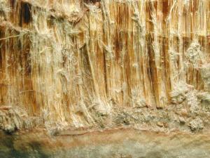 disturbed asbestos - asbestos fibres